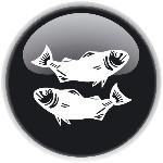 מזל דגים - הורוסקופ 2013